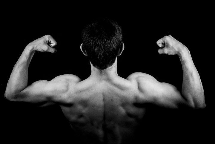 Comment muscler ses biceps avec et sans matériel?