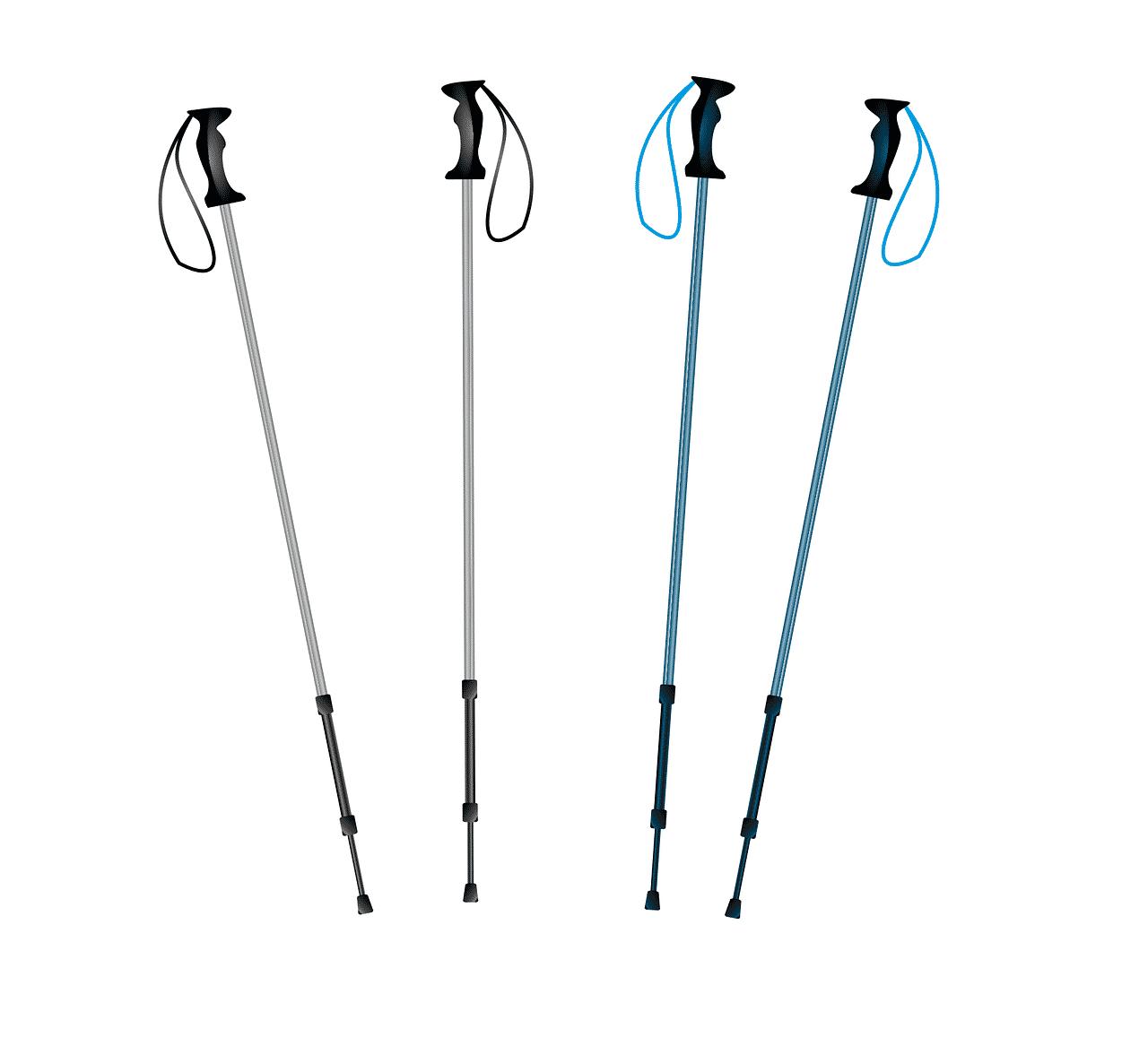 Les bâtons de marque nordique