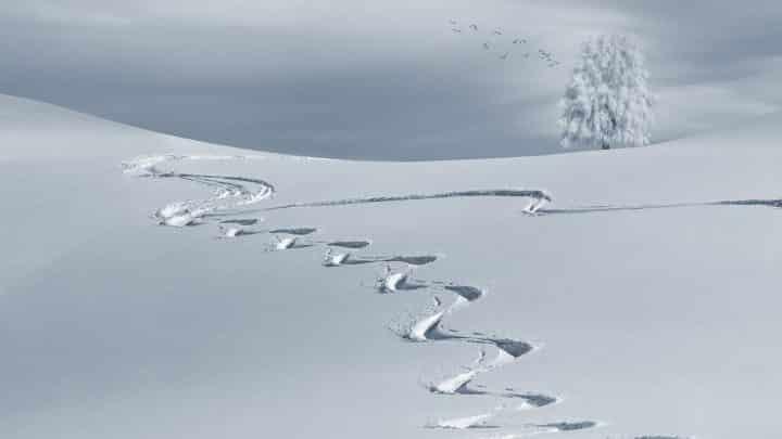 Sport d'hiver : comment choisir son équipement pour une randonnée ?