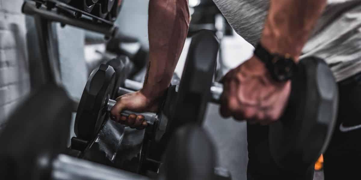 Musculation en séries longues et croissance musculaire