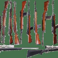 Carabine à plomb: comment bien la choisir  ?