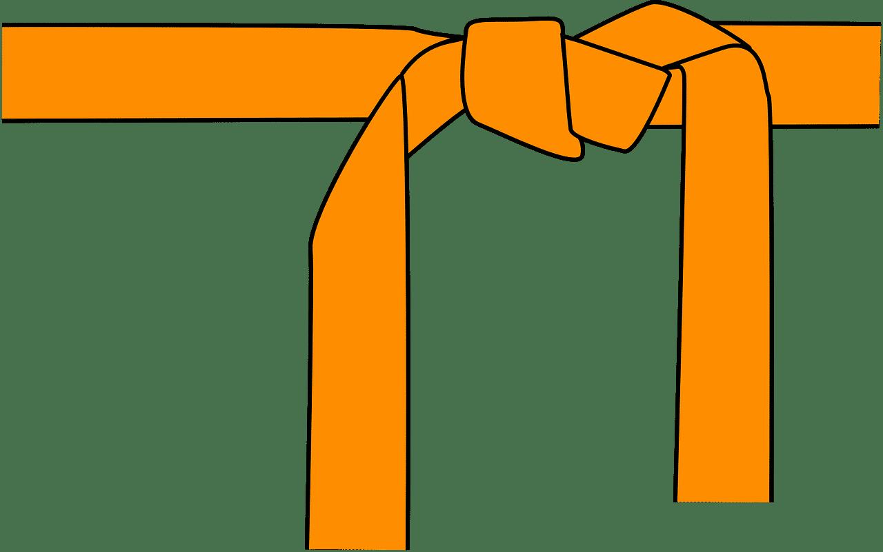 Couleur ceinture judo: fonctionnement et évolution