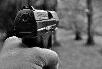 Comment bien le choisir son pistolet à plomb ?