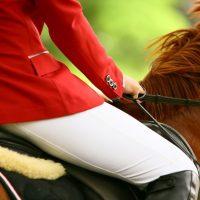 L'équitation est un sport, voici pourquoi