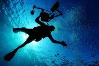 Les différents niveau de plongée